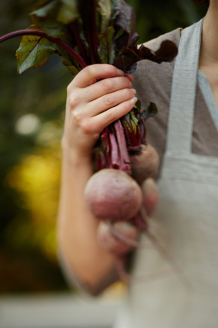 Recipe: Beet Kvass KINFOLK