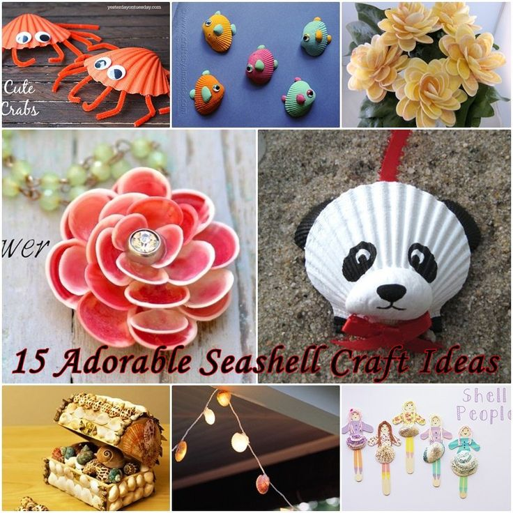 I collected some Seashell Craft Ideas, you can make seashell craft with kids. In this summer, take kids to the beach to have some fun and do the crafts.