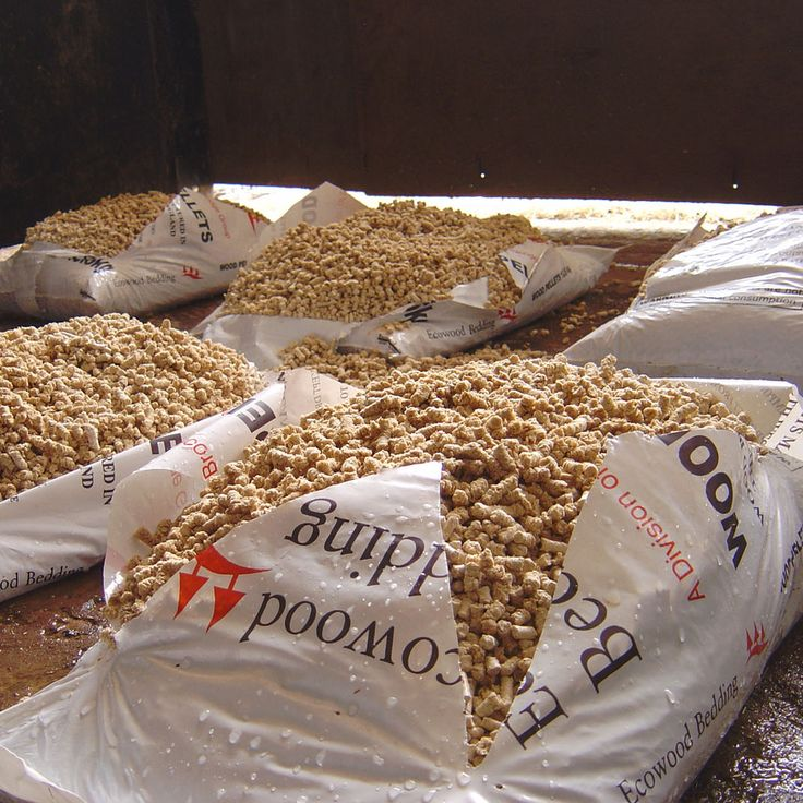 Use pellet horse bedding for cat litter. Costs about $1 for 10 lbs and smells…