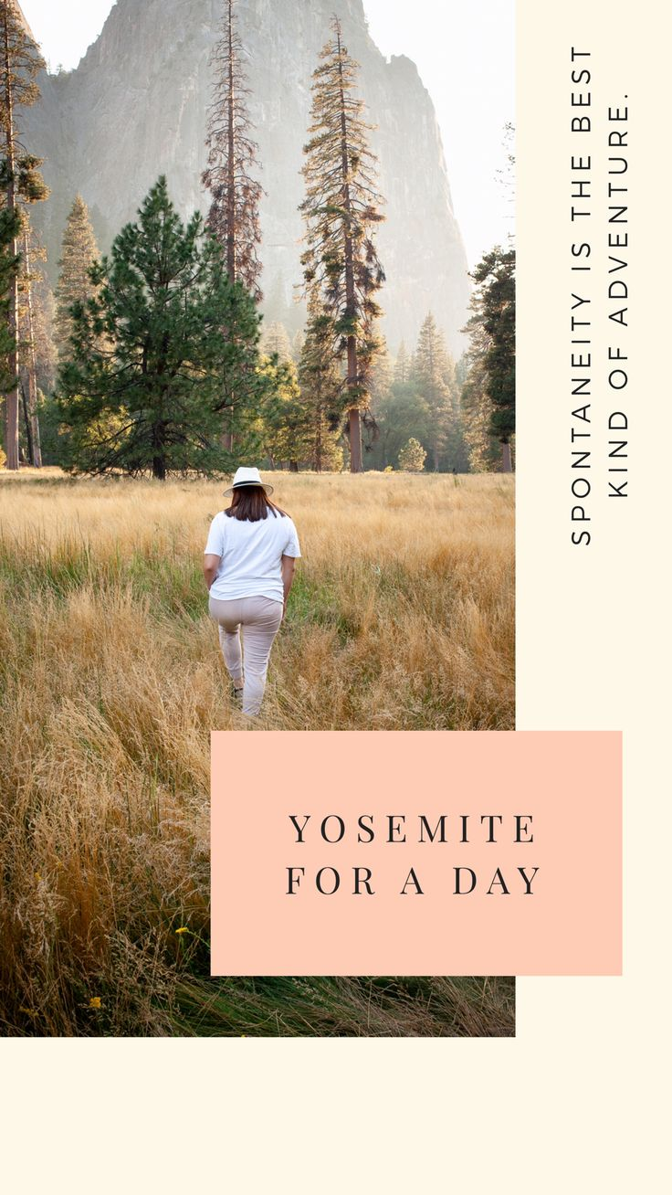 One day guide to Yosemite National Park Yosemite National Park, National Parks, Hispanic Heritage Month, Something To Do, Adventure, Day, Travel, Viajes, Destinations