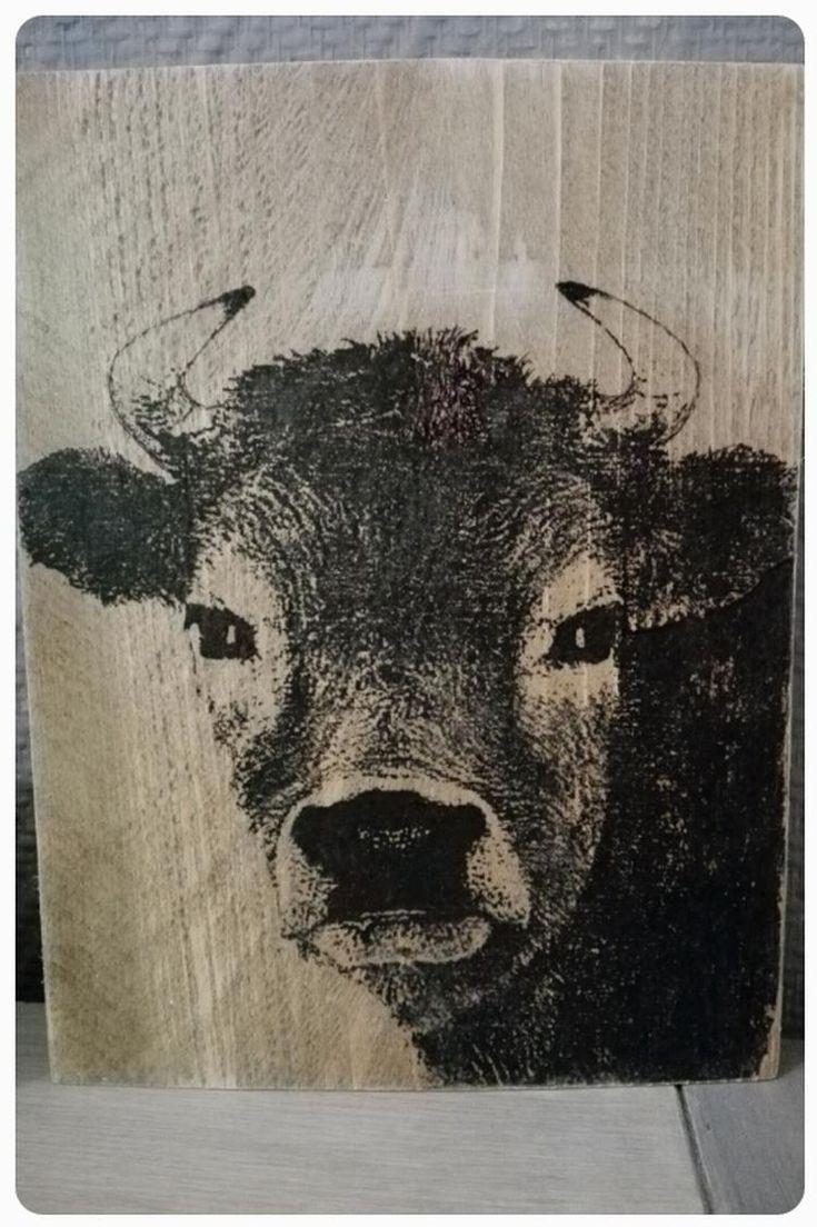 Foto koe, getransformeerd op hout met houtlijm.