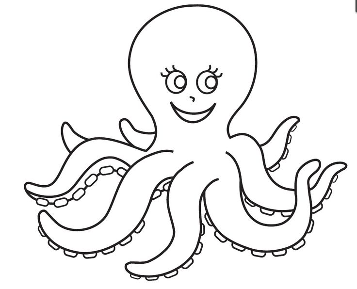 14 best octopus coloring pages images on pinterest for Octopus drawing easy