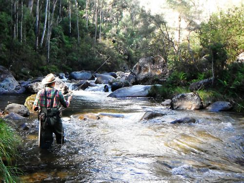 33 best fly fishing images on pinterest fishing fly for Fly fishing shops near me