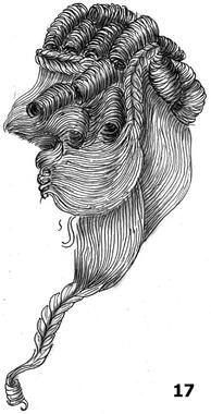 Coiffure avec du volume. La chevelure est coiffée sur l'arrière en hauteur. Les cheveux de la partie frontale et du sommet de la tête sont c...