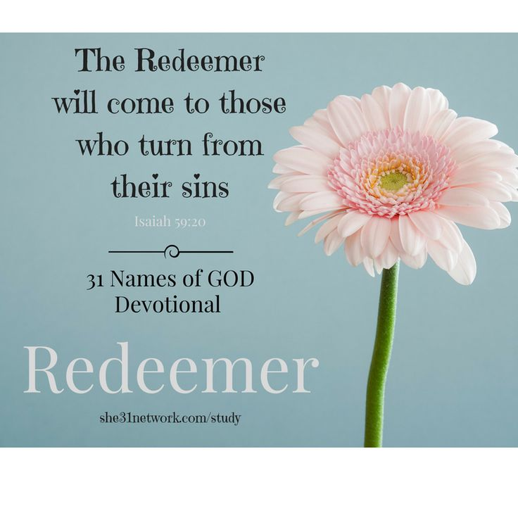 FREE Online Devotional Bible Study with FREE 32-page Workbook and Live Support Group. Study God's Word in a beautiful new way. For details visit www.she31network.com/study Jesus is our redeemer. Our kinsman redeemer. Story of Ruth and Naomi and Boaz. Jesus is Lord of the second chance. My redeemer lives!