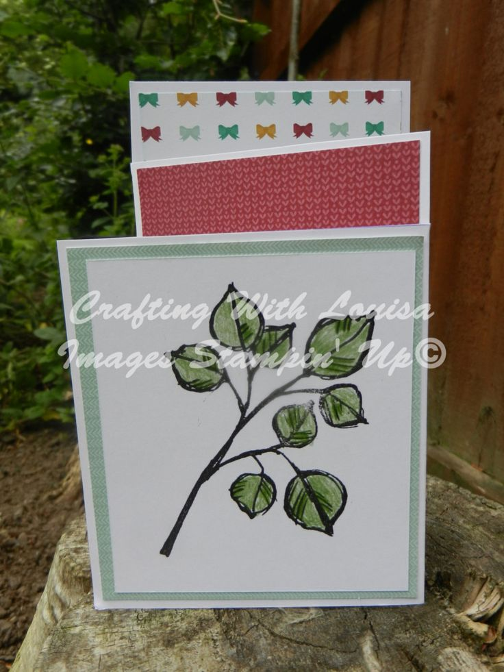 Hello friends, Welcome to week 3 of the design team. This week I had fun looking at different cuts and folds for card, I took my inspiration from Vamp Stamps eArticle called Speciality Card Folds: …