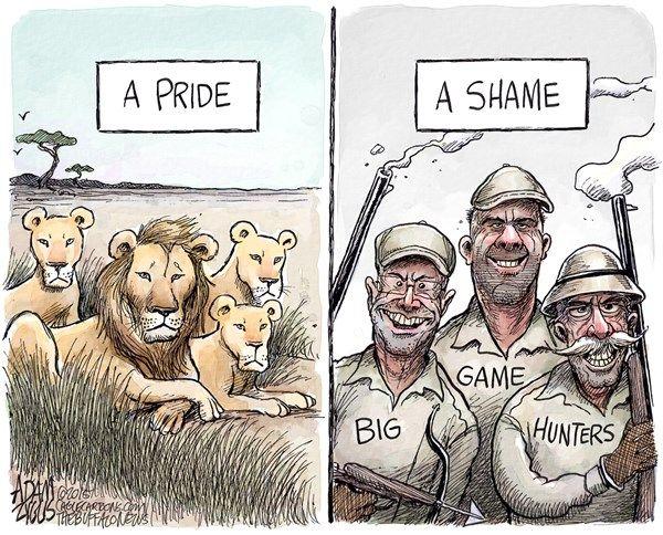 Cecil the lion adam zyglis the buffalo news cecil lion for Big 5 fishing license