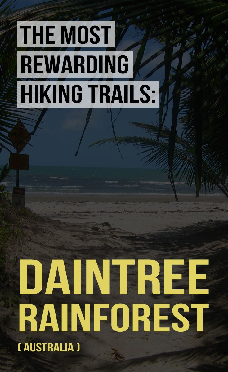 New article ✈ Check out one of the most rewarding hiking trails: Daintree rainforest, Australia. ➡ http://www.victorstravels.com/australia/hiking-trail-daintree-rainforest-australia/