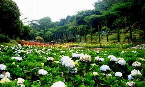 tempat wisata di malang Taman Rekreasi Selecta