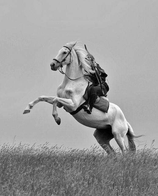 archère à cheval