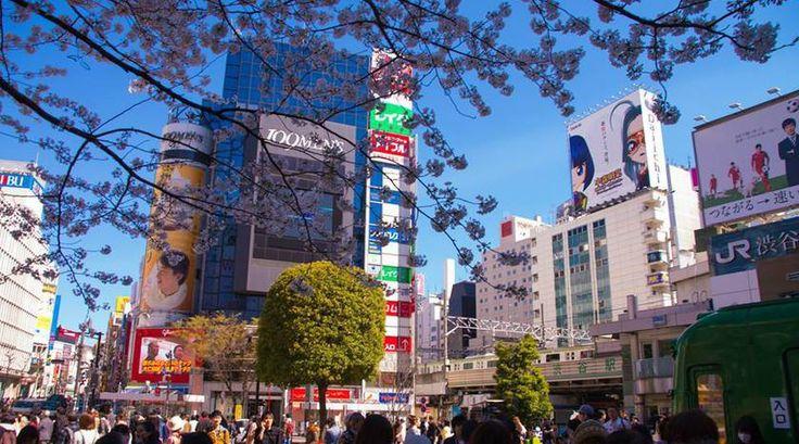 Hou jij van Anime? Dan is het vast een kleine wens eens naar Japan te gaan. In het voorjaar 'sneeuwt' het knalroze bloesemblaadjes over de straat en waan je je even in jouw favoriete Anime. Tip van reporter Marlijn: Ueno Park!