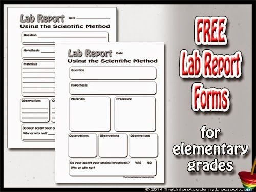 Free Science Lab Report Forms for lower elementary grades. Includes ruled worksheet and one with blank boxes. Helps students learn to use the basics of the scientific method.
