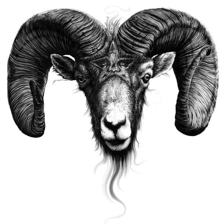 Dark Aries Head Tattoo Design photo - 3