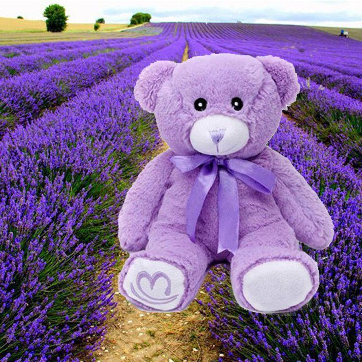 17 Best ideas about Teddy Bear