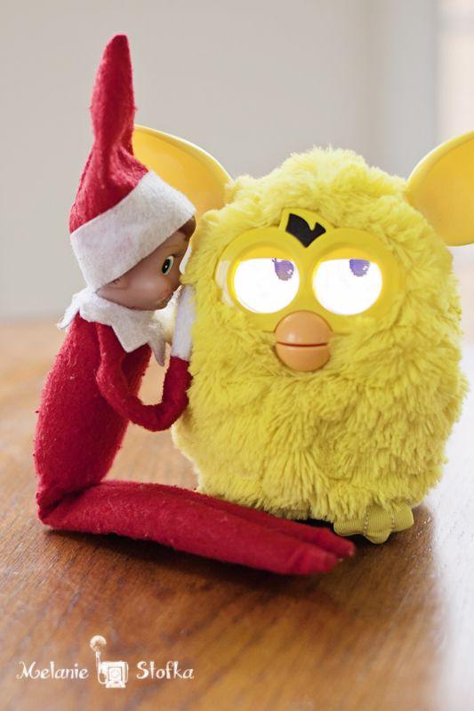 Elf on the Shelf Whispering To FurbyDobby Ideas, Christmas Elf, Shelf ...