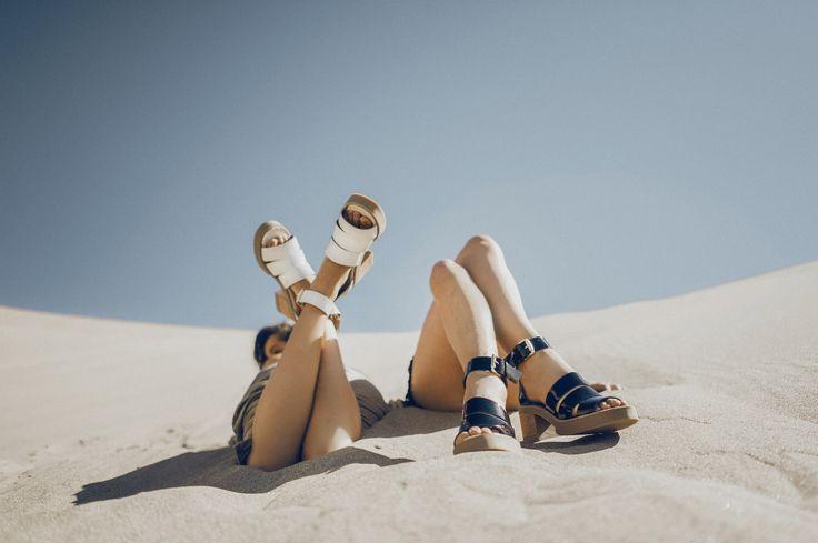 Campaña Playa Paraíso, 2014
