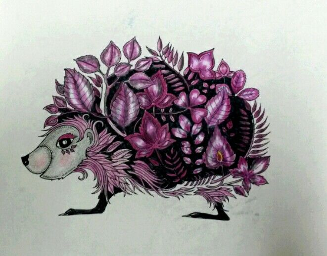 572 Best Images About Coloring Book Pages And Ideas On Pinterest