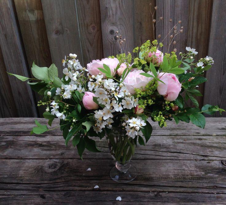Peonies, Wild Rose, Lady's Mantle