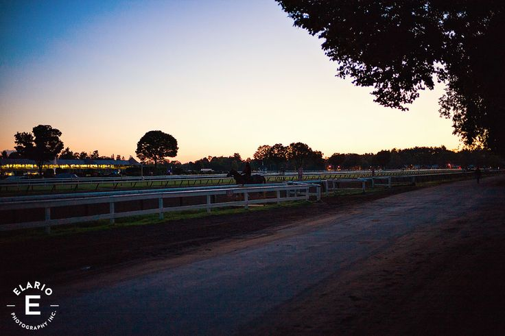 sunset, horse racing, race track, saratoga, horses #horses #sunset