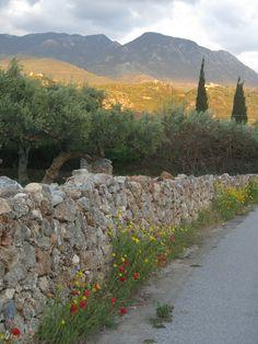 Kardamili village, mani, Greece.