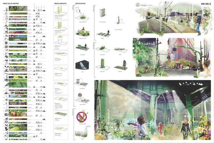 Future Green : Portfolio : Spontaneous Urban Plants