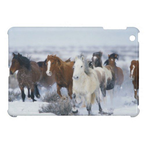 Wild Horses in Snow Cover For The iPad Mini