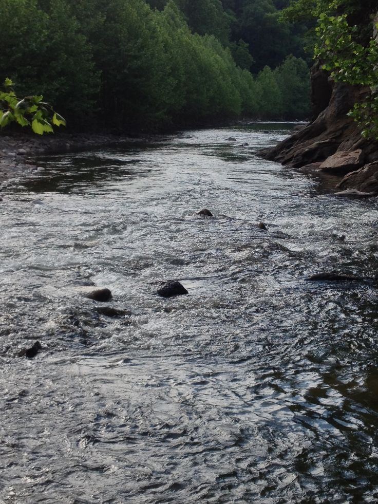 48 best wv oh md and pa trout streams images on for Best trout fishing in pa
