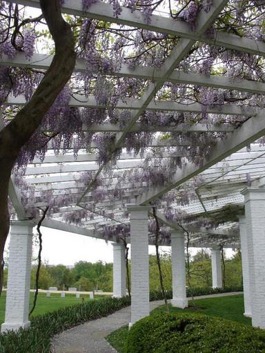 Arbor in the gardens of Arlington House, the home of Gen. Robert E. Lee, in Arlington National Cemetery, Arlington, VA