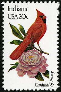 State flower: peony.... State bird: cardinal ....State tree: tulip  ....not on stamp:  State pie:  Sugar Cream