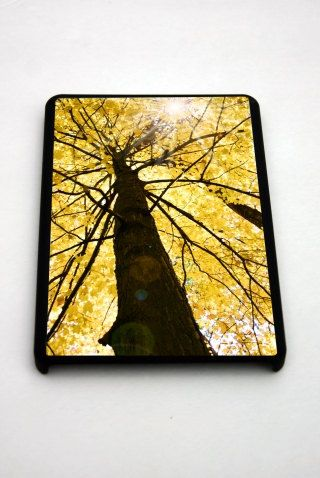 Sparkling Fall by Michael Carty on Etsy