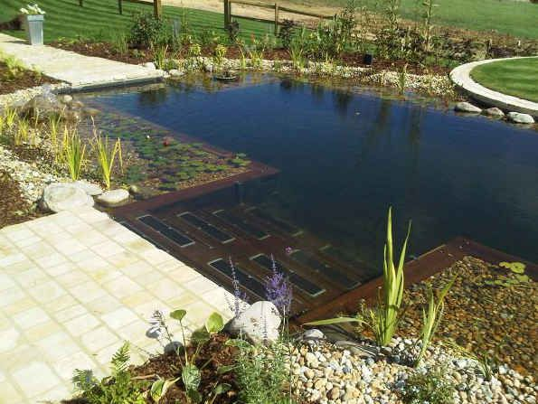 65 best pool to pond conversion and building ponds images for Convert pool to garden