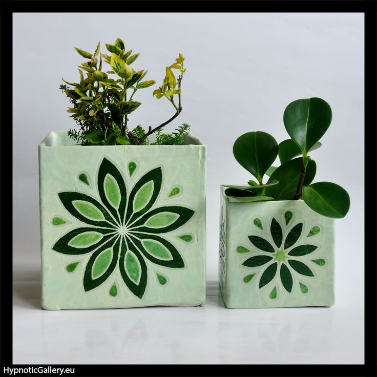 Planters cubes with green pattern.