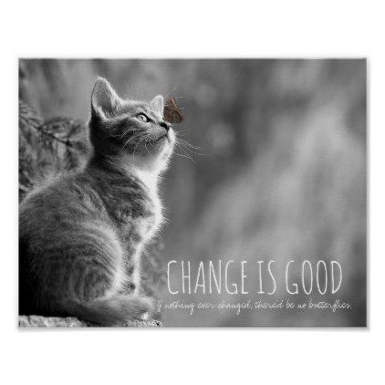 Change Is Good Butterfly Inspirational Quote Cat Poster