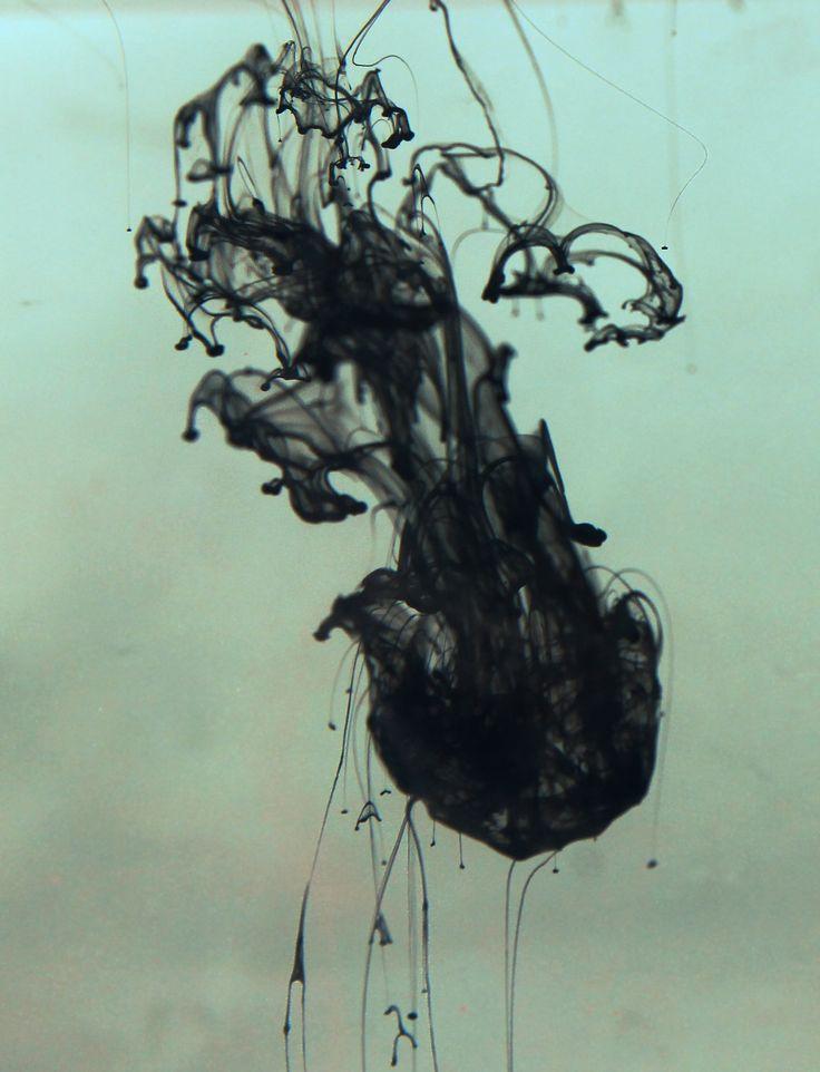 jellyfish - Hledat Googlem