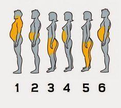 Para poder eliminar la grasa, lo primero que debemos saber es cómo fue que la obtuvimos, ahí está la clave de todo. 1- Obesidad...