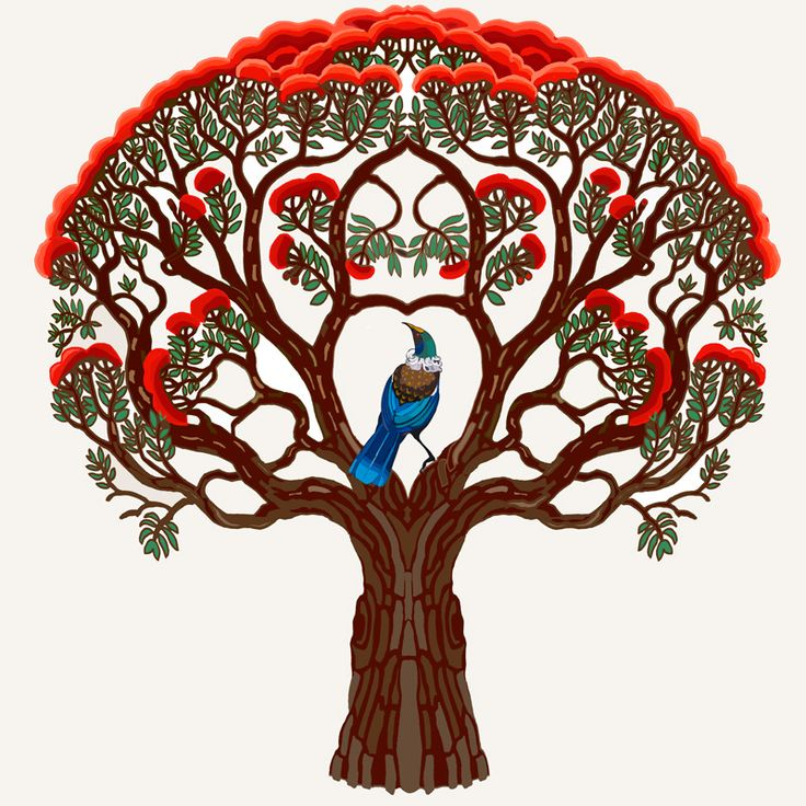 Art. New Zealand. Tui in Pohutukawa print