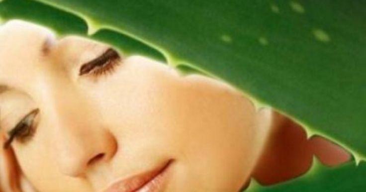 DIY+Aloe+Vera+Mask+For+Skin+And+Hair+-+View+article:+http://ilyke.co/u7041p5880/diy-aloe-vera-mask-for-skin-and-hair/77459 @ilykenet