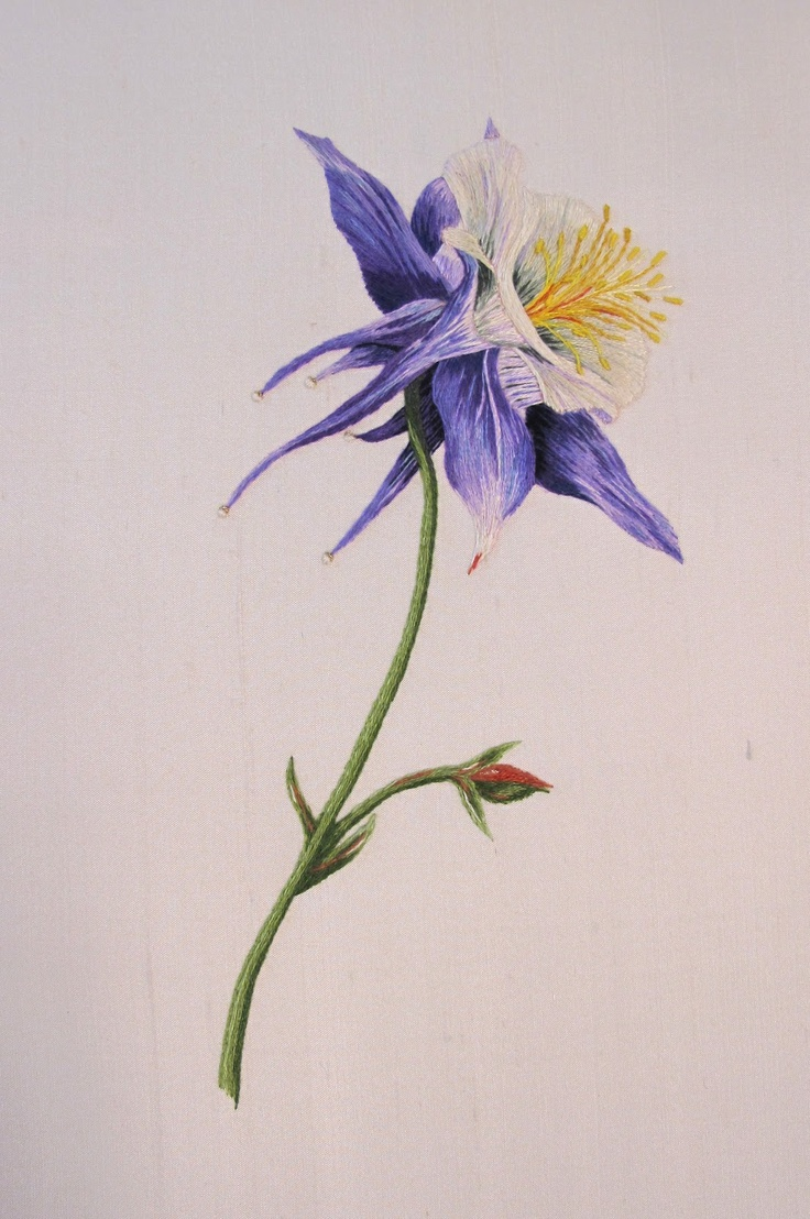 17 best columbine images on pinterest columbine flower water columbine by sharon henderson silk shading izmirmasajfo