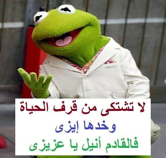 Take It Easy Funny Picture Jokes Arabic Funny Funny Dude