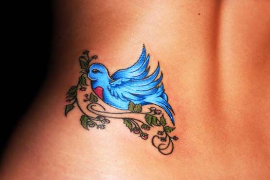 17 Best Images About Robin Tattoos On Pinterest