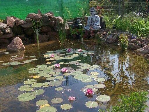 Quiero hermoso estanque con estatua de buda y flores de for Jardin 8686