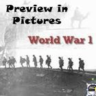 FREE! World War I Preview in Pictures World History. This is a 25-slide power point presentation that your students will enjoy when learning about ...