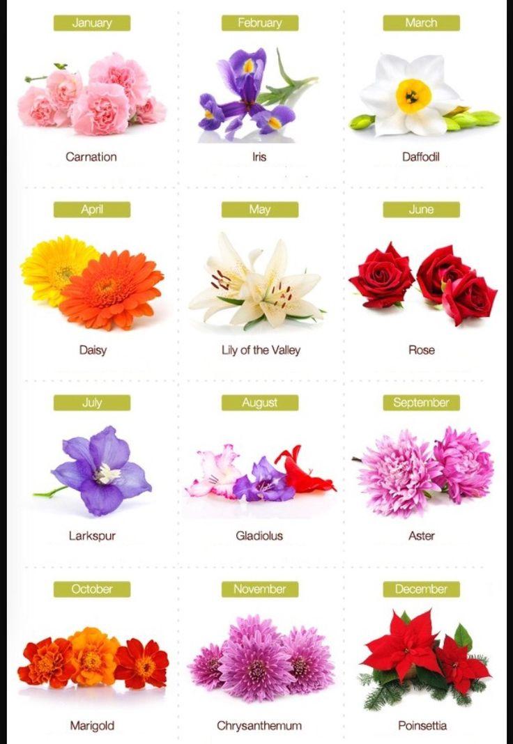 Birth Month Flowers Tattoos Pinterest Birth Month Flowers Month Flowers And Flower