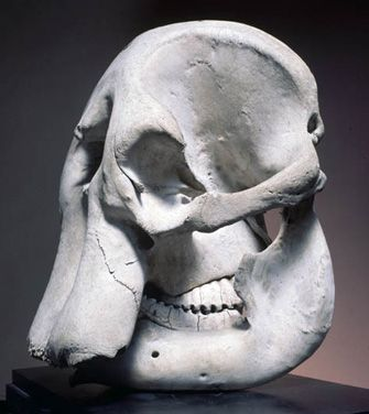 The elephant skull Henry Moore kept in his studio. [Find which of his works may have been most inspired by it]