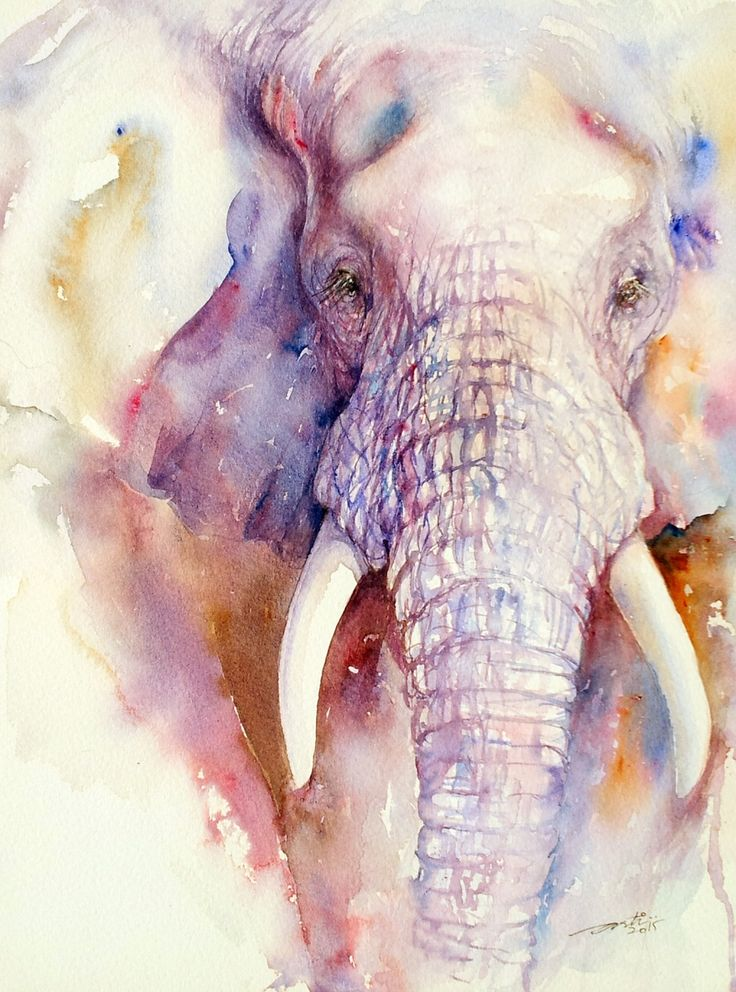 Aquarell Elefant