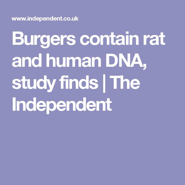 Burgers contain rat and human DNA, study finds | The Independent