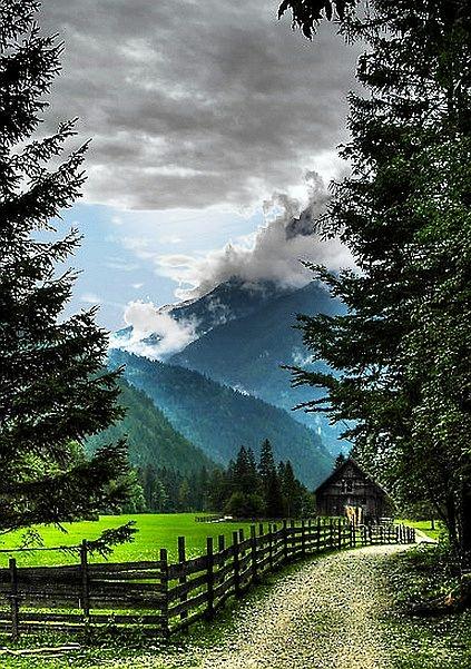 Mountain View Farm...heaven!!