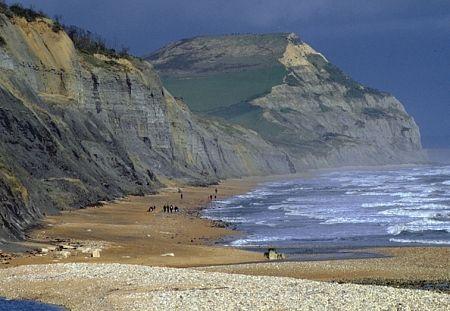 Jurassic Coast, Charmouth, Dorset. My beach x