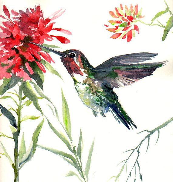 how to draw a hummingbird and flower step by step