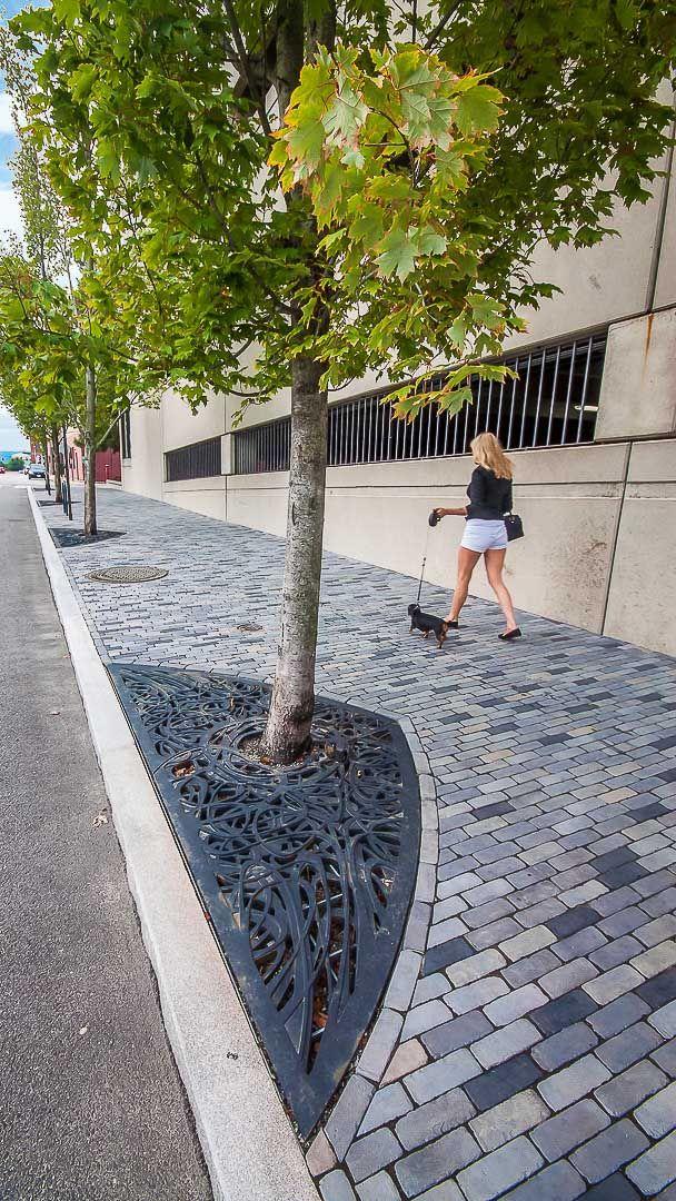 unique tree grates for street trees